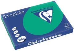 Donkergroene Clairefontaine Trophée Intens A3 dennengroen 120 g 250 vel
