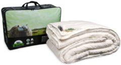 Witte Texeler Slaapzacht Wollen Dekbed Dubbel - 4-Seizoenen - 100% Lamswol - Lits-Jumeaux - 240x220 cm