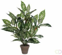 Groene Mica Decorations – Plant New Day Mica Kunstplant Dieffenbachia Groen - H 70cm