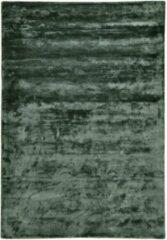 Disena Groen vloerkleed - 160x230 cm - Effen - Landelijk