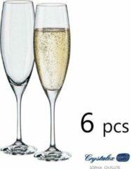 Transparante 6x Sophia kristallen champagne glazen - flute 230 ml - Crystalex Bohemia