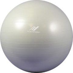 Rucanor Fitnessbal - Ø 65 cm - Grijs