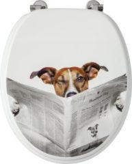 Toiletzitting Allibert Decor Business Dog 37,3x5,6x44,8 cm MDF Inox Scharnieren