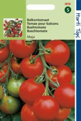 Hortitops Zaden - Tomaten Maja -Balkontomaat Amateur Variety