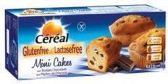 Cereal Mini Cakes Met Stukjes Chocolade Glutenvrij Lactosevrij