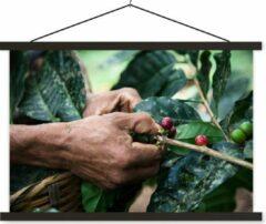 TextilePosters Een mens oogst de koffiebonen schoolplaat platte latten zwart 150x100 cm - Foto print op textielposter (wanddecoratie woonkamer/slaapkamer)