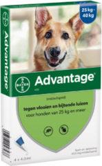 Advantage Hond 4 pip - Anti vlooien en luizenmiddel - 4 ml 25-40 Kg