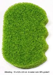 Groene MARTINISPA Aroma -Ergonomische Badspons – Aloë Vera - Voordeelverpakking - 2 Stuks!!