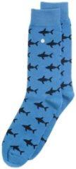 Blauwe Alfredo Gonzales Shark Attack Light Blue/Navy, Maat XS (35/37)