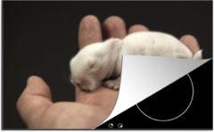 KitchenYeah Luxe inductie beschermer Baby hamster - 78x52 cm - Baby hamster in de hand - afdekplaat voor kookplaat - 3mm dik inductie bescherming - inductiebeschermer