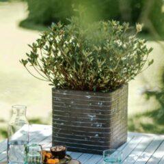 Capi Europe Pot vierkant Row NL 30x30x30 olijfgroen