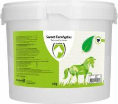 Excellent Sweet Blocks Mint/Eucalyptus - Paardensnoepjes - 3kg