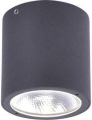 Paul Neuhaus Georg 9673-13 LED-buitenlamp (plafond) 7 W Warm-wit Antraciet