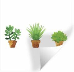 StickerSnake Muursticker Aquarel Planten - Aquarel illustratie bloempotten - 50x50 cm - zelfklevend plakfolie - herpositioneerbare muur sticker