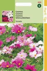 Rode Hortitops Zaden - Cosmos Bipinnatus Sonata Gemengd