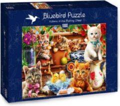 Bluebird puzzel Katjes in de schuur (1000)