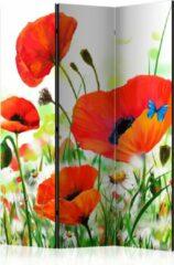 Kamerscherm - Scheidingswand - Vouwscherm - Country poppies [Room Dividers] 135x172 - Artgeist Vouwscherm