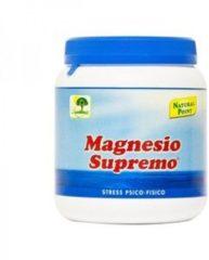 Natural Point Magnesio Supremo Polvere 300 G