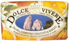 Nesti Dante Dolce Vivere Handzeep Capri 250 gram