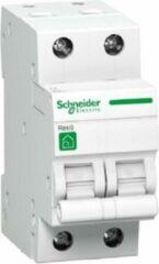 Schneider automaat 2 polig 20A - 3kA/C