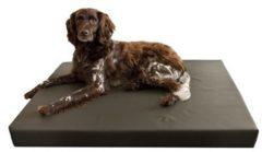 Bruine Merkloos / Sans marque Hd orthopedisch honden ligbed grijs 100x75 cm