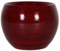 Rode 5 stuks Bloembak Pot Cresta deep red D19 H16 cm TS
