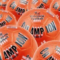 Oranje Bal Champion ZAK a 10 stuks.bal voor Carbid-schieten