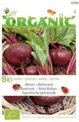 Buzzy Organic Bieten Egyptische (Skal 14275)