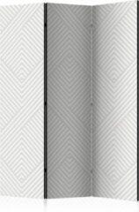 Grijze Kamerscherm - Scheidingswand - Vouwscherm - Broken Lines [Room Dividers] 135x172 - Artgeist Vouwscherm