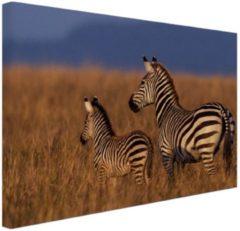 Bruine MuchoWow Moeder en baby zebra Canvas 120x80 cm - Foto print op Canvas schilderij (Wanddecoratie woonkamer / slaapkamer) / Dieren Canvas Schilderijen