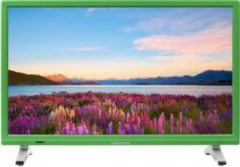 "MEDION® LIFE® P13500 Fernseher, 54,6 cm (21,5"") LED-Backlight, HD Triple Tuner, integrierter Mediaplayer, CI+ Modul, grün"