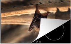 KitchenYeah Luxe inductie beschermer Baby Dieren - 80x52 cm - Baby vleermuis ondersteboven - afdekplaat voor kookplaat - 3mm dik inductie bescherming - inductiebeschermer
