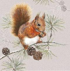 Bruine Ambiente Squirrel In Winter papieren servetten