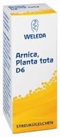ARNICA PLANTA tota D 6 Globuli 10 g