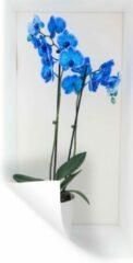 StickerSnake Muursticker Orchideeën - De felblauwe orchideeën in een bloempot - 40x80 cm - zelfklevend plakfolie - herpositioneerbare muur sticker