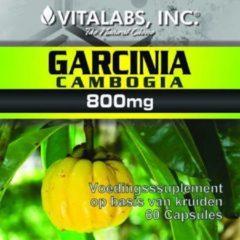 Vitalabs Garcinia Cambogia - Afslankpillen