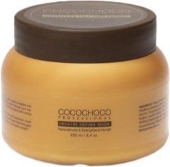 Professional Keratin Hair Mask 250ml COCOCHOCO