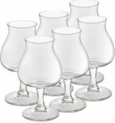 Royal Leerdam 18x speciaal bierglazen/tulpglazen transparant 250 ml Lund