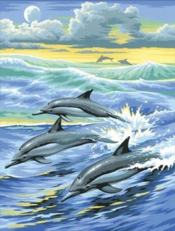 Afbeelding van K.S.G Junior Paintings Schilderen op nummer Dolfijn
