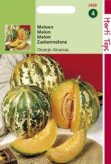 Groene Hortitops Zaden - Meloenen Oranje Ananas