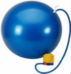 Petasos Fitnessbal - Gymbal - Yogabal - Inclusief Pomp - Anti Burst - Blauw : 75cm