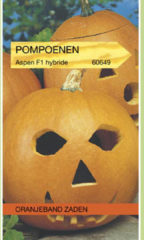 Oranjeband Pompoenen Aspen F1 Hybride