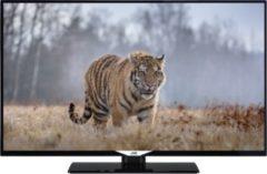 JVC LT-43V44JF 43 Zoll LED TV