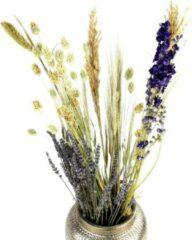 Dijk Naturel Collections Droogbloemen Boeket Multi | Dried Flowers | Droogbloemboeket | Multi | 70 cm