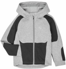 Grijze Sweater Puma EVOSTRIPE HOODED JACKET