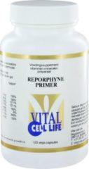 Vital Cell Life Reporphyne Primer (120Cap) Vitamine