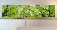 Groene SoWhat-design Keuken achterwand: bladerdak 305 x 70 cm