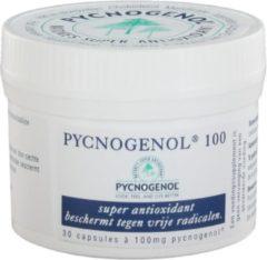 Vitafarma Pycnogenol 100 mg - 30 Capsules