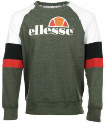 Groene Sweater Ellesse Eh H Sws Col Rond Tricolore