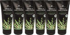 Herbamedicus Hand & nagelcrème - Eucalyptus - 6 x 100 ml